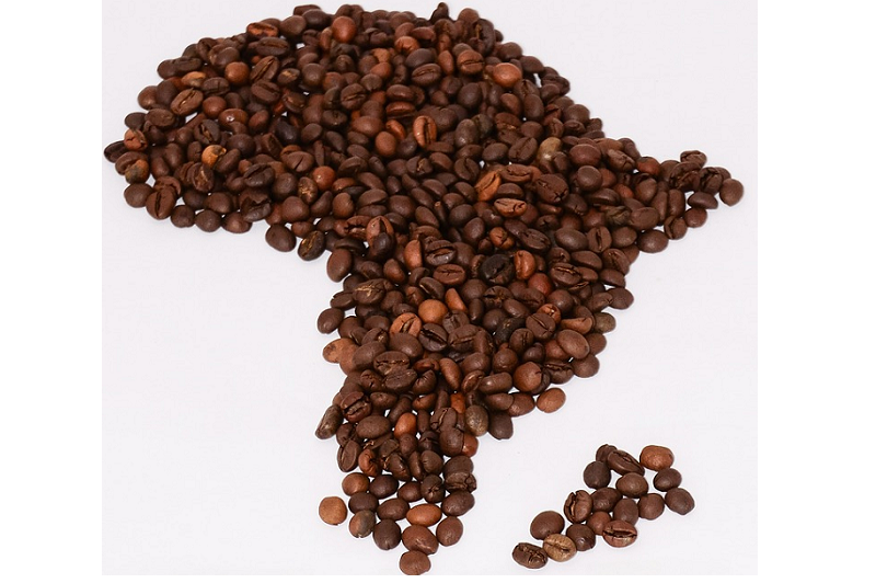 The Best Coffee From Each Continent